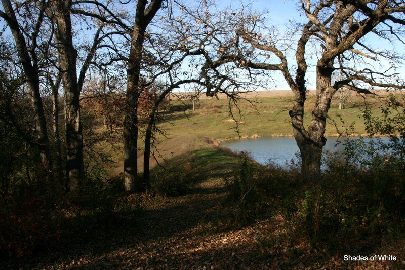 Walk on the farm 020-001