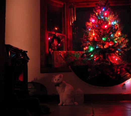 Dec_07_045